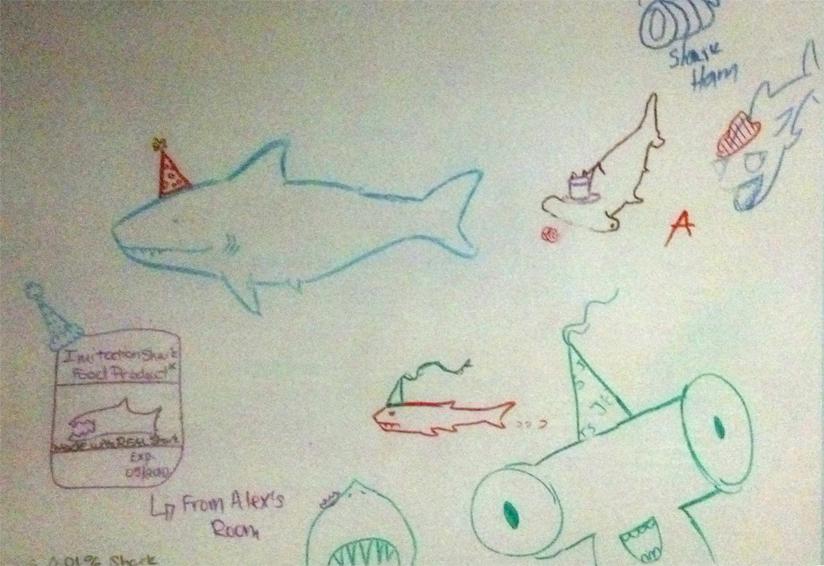 Kat's Korner 284: Shark Board!